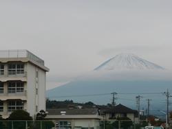 Hujiiwamatsuchufuji2
